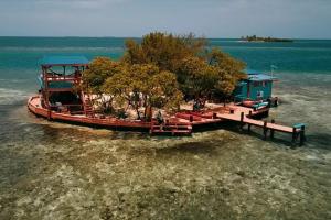 Bird Island - Airbnb Rentals