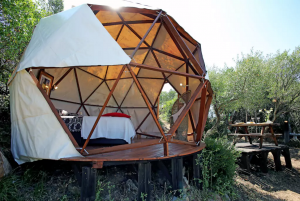 Geodesic Dome - Airbnb Rentals