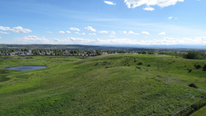 Signal Hill - Calgary Neighbourhoods