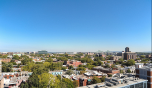 Le Plateau-Mont-Royal - Rent in Montreal
