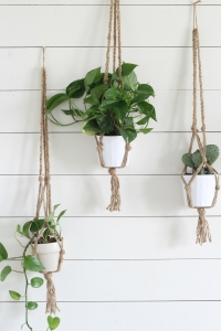 Hanging Planter Pots - Gardening Ideas