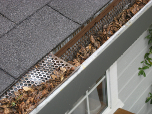 Gutters and Roof - Spring Cleaning