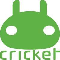 Cricket Property Management